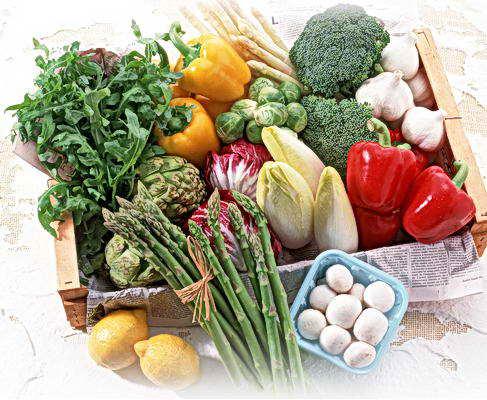 Органические удобрения. Наборы для рассады