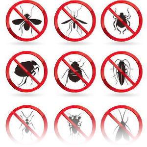 Средства борьбы с насекомыми, сорняками